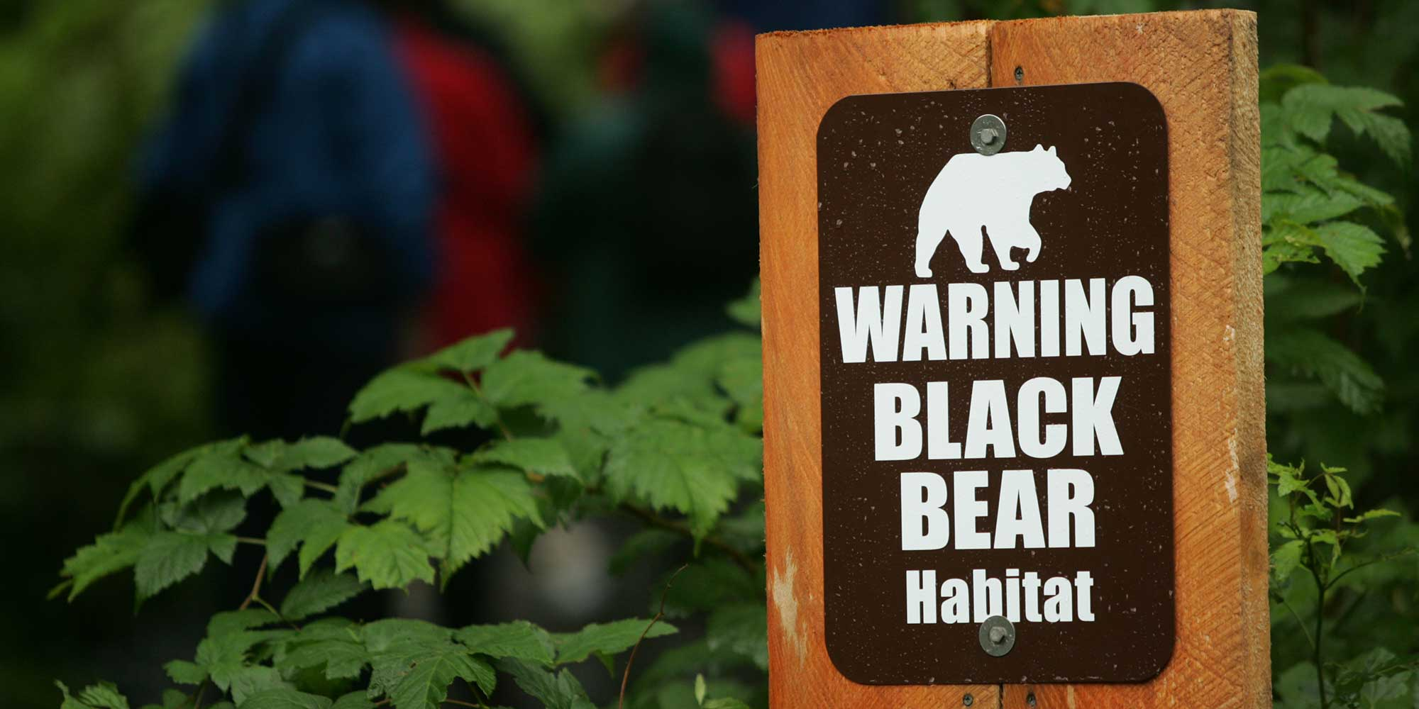 a sign says Warning black bear habitat