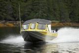 Self-guided Alaska fishing & sightseeing for the whole family!